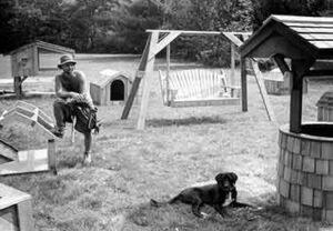 Jamaica Cottage Shop origins - building dog houses in Jamaica, Vermont