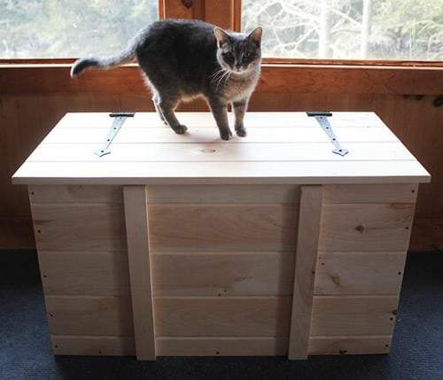 2x3 Ready to Assemble Pellet Box with cat