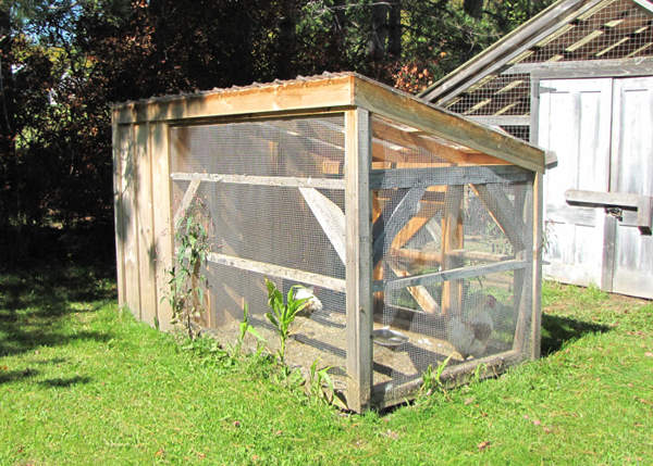 5x10 Chicken Coop with hardware cloth