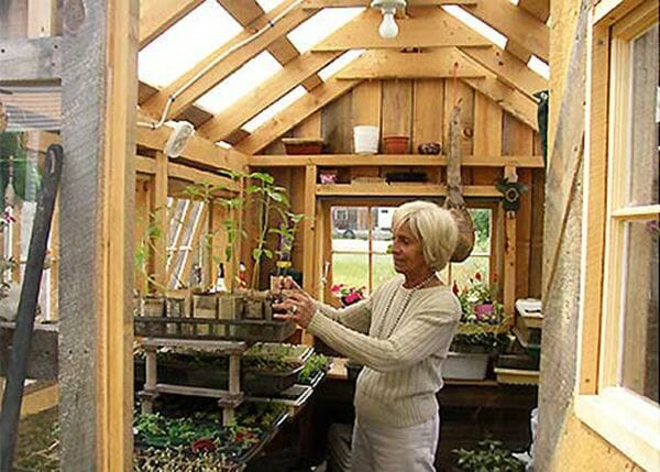 6x8 Greenhouse being used by a skilled gardener