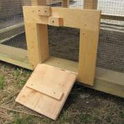 Chicken coop door that turns into a ramp when opened