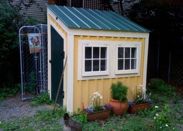 4x6 Chicken Coop