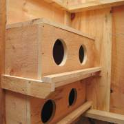 Four Nesting Boxes for Chickens or other fowl.  Handmade from Eastern White Pine and left unfinished.