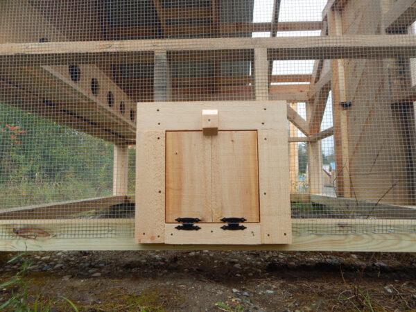12x12 JCS Built Chicken Door with Ramp closed on 8x8 Chicken Coop. Exterior view.