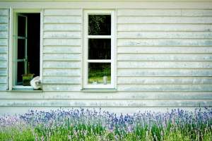 Upkeep the Paint Job on Your Shed