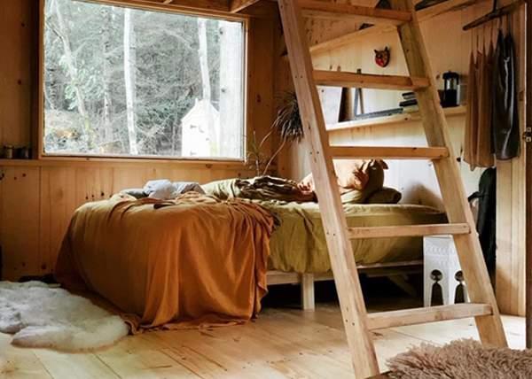 Kiln Dried Spruce Ladder