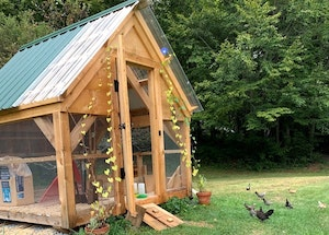 8x8-chicken-coop-small-img